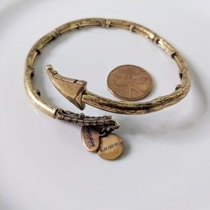 Alex and Ani Jewelry - Alex and Ani Rafaelian Gold Arrow Wrap Bracelet